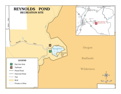 map of Reynolds Pond - Recreation Map
