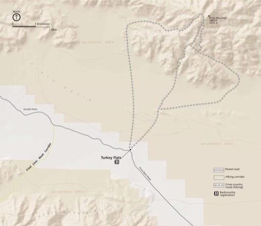 Detail map of Turkey Flats in Joshua Tree National Park (NP) in California. Published by the National Park Service (NPS).