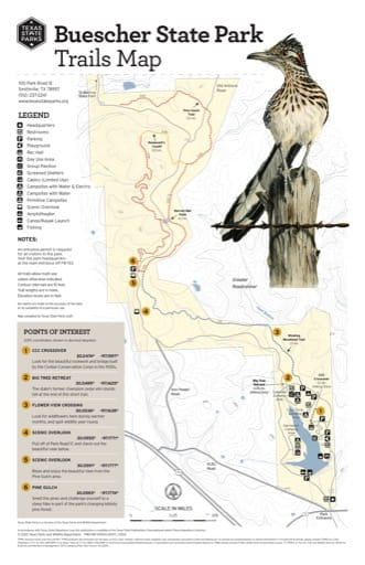 Trails Map of Buescher State Park (SP) in Texas. Published by Texas Parks & Wildlife.