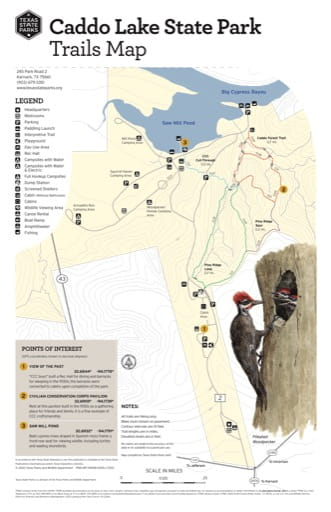 Trails Map of Caddo Lake State Park (SP) in Texas. Published by Texas Parks & Wildlife.