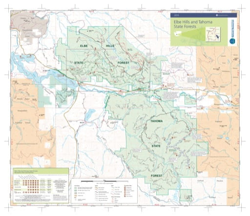 Map of Elbe Hills State Forest and Tahoma State Forest. Published by Washington State Department of Natural Resources (WSDNR).