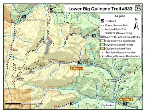 Map of Lower Big Quilcene Trail #833 in Olympic National Forest (NF). Published by the U.S. Forest Service (USFS).